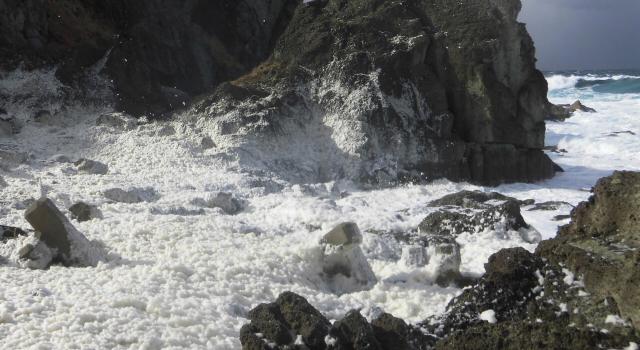 冬にしか見られない海の花があるって本当?冬の風物詩「波の花」のアレコレ